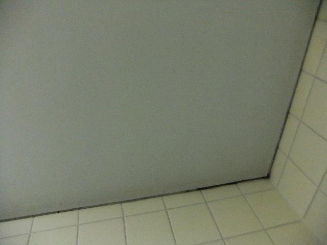 2011_05030041